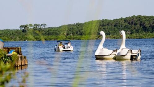 Landas fin de semana mayo y junio: Camping 4* Punta Lago en Lago Leon