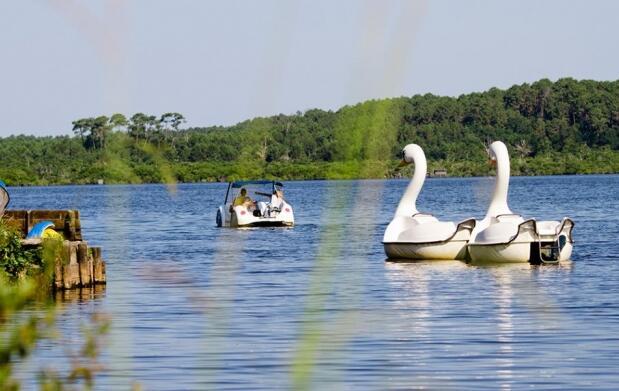 LANDAS en el PUENTE DE MAYO: Camping 4 **** Punta Lago en Lago Leon