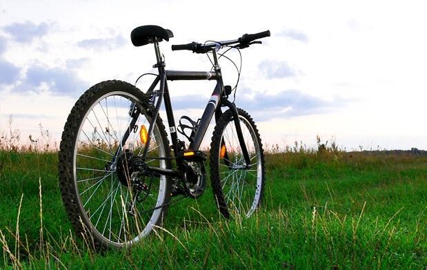 Revisión de bicicleta con ajustes y opción a engrases