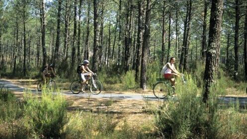 Fin de semana mayo y junio: mobil home de 4 a 8 pers. Camping 4* Le Boudigau