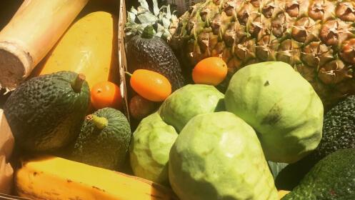 Cesta de frutas variadas de Tiendadefruta.com
