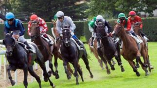 Carrera de caballos en el Hipódromo