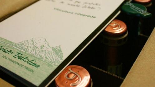 3 botellas de txakoli con visita a la bodega y cata para 2 personas