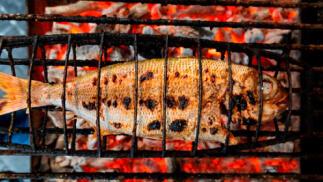 ¡Exquisito menú con pescado a la parrilla!